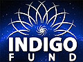 indigo-charitable-fund-120-x-90