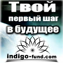 indigo-charitable-fund-125-х-125-2