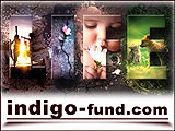 indigo-charitable-fund-160-x-120-2